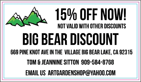 Big Bear Discount Coupon